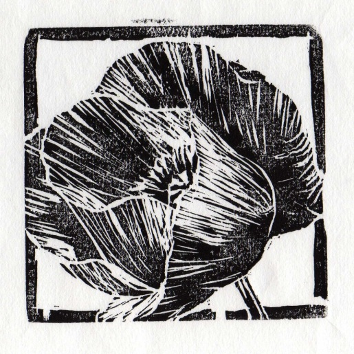 carolyn's garden poppy, woodblock, 2008
