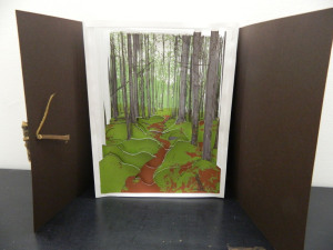 """to Lost Pond"", accordion book made from 7 screen-prints with cut-aways, 2014"