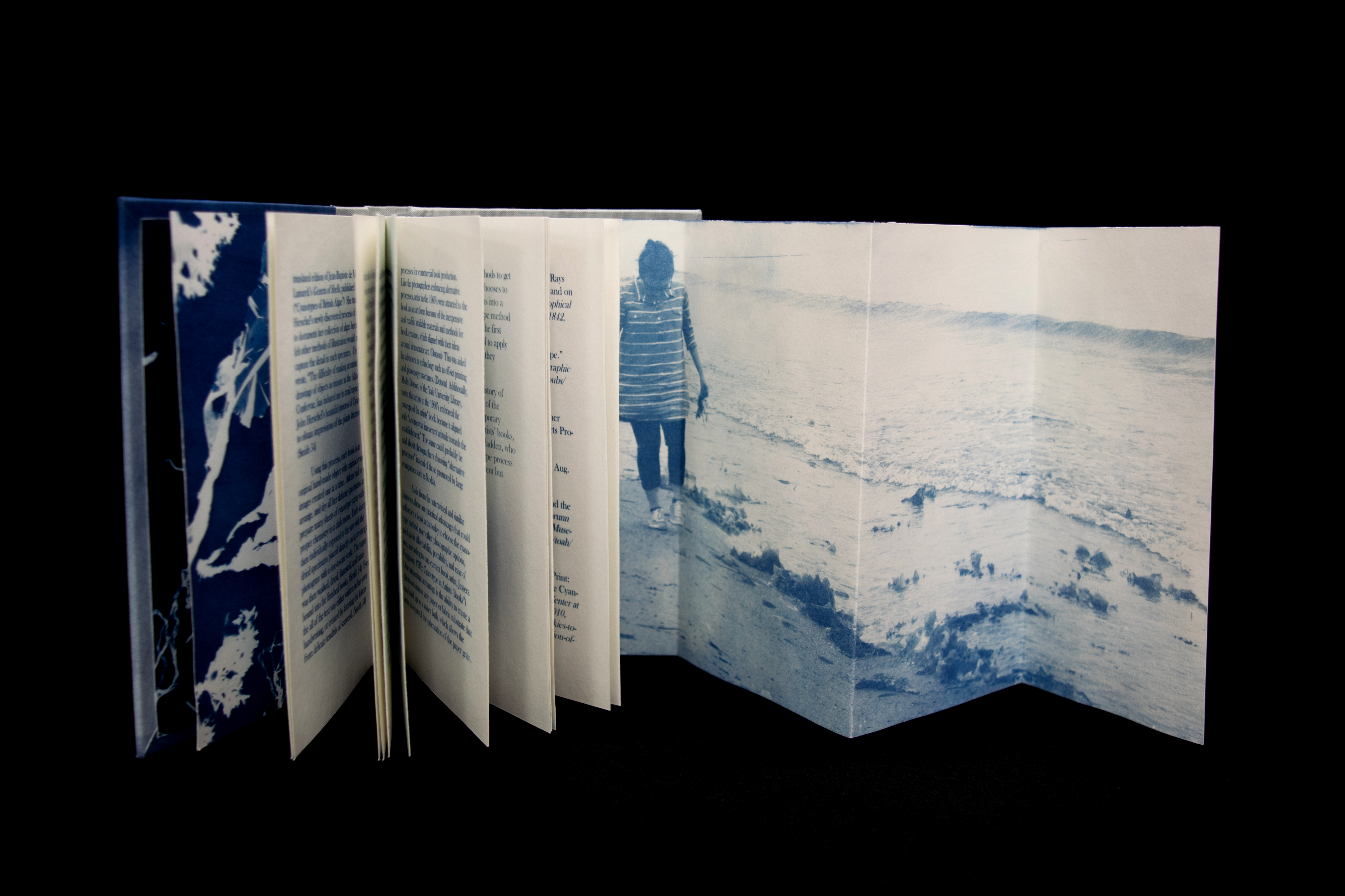Image of The Blue Book, showing pull out with image of the artist collecting seaweed on a beach